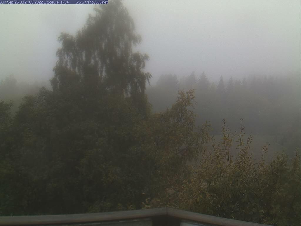 Webcam Tranby, Lier, Buskerud, Norwegen